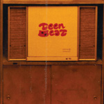 Teen beat Zenith Solid State Stereo
